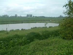 Fishing lake at Curborough