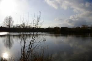 Somersham Lakes
