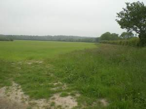 West from Sandy Lane, Barney