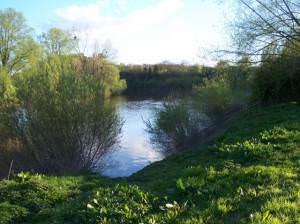 Clevelode Severn River Port