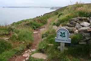 The Coast Path near Newdowns Head