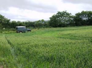 Field near Hill Farm