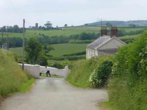 Llwynbychan Farm
