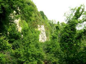 Whitlands Cliff