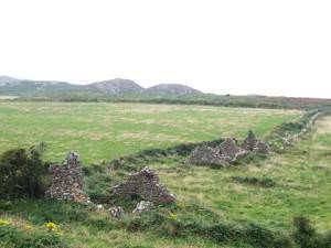 Maes Y Mynydd