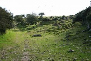 Altarnun: bridleway by Carne Down