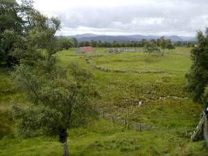 Abandoned Farmstead of Ballourie