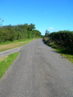 Straight stretch of single track road by Pinsla Park