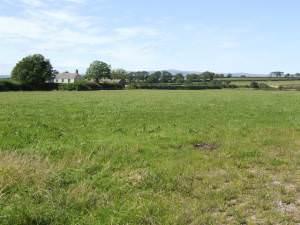 Fields near Little Newhouse