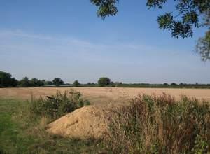 Fields near Bretforton