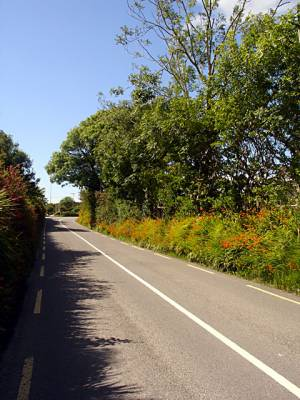 Lane near Cahersiveen