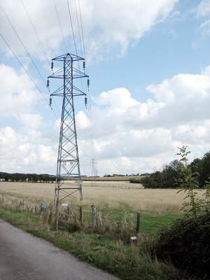 Pylons near Buckle Street