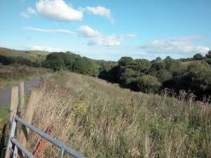 Near Waterwynch