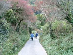 Tarka Trail near Lee Village
