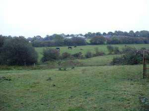 Farmland near Weston Lane Farm
