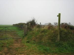 Start of bridleway into the mist