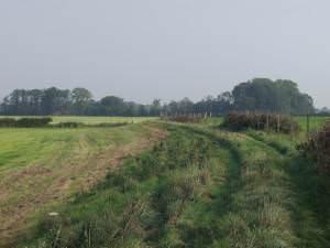Llwybr Hafren (Severn Way)