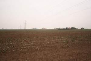 View to Ireland Farm