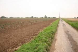 Road to Hobhole Drain