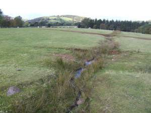 Stream running off the Black Mountains
