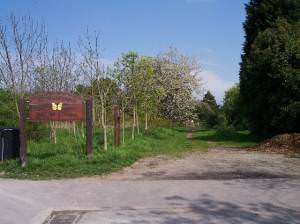 St. Wulstans Nature Reserve.