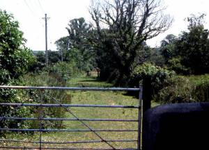 Site of the former Bude Canal at Marhamchurch, 1976