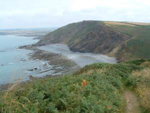 Cliff path looking NE and down on to beach at Millook Haven