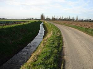 Minor Road and Ditch to East of Old Leake