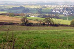 Arable farmland, south of Galmpton