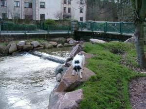 Carron Water and Footbridge,  Stonehaven