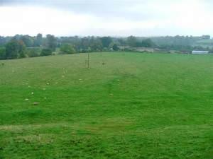 Field between Mill Wood and Greta Bridge, Greta
