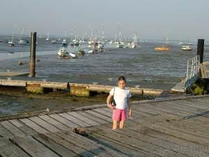 Mengham Salterns - tide out!