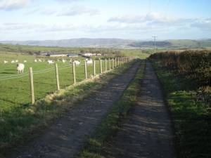Farm track to Middle Woodbatch Cottage Farm