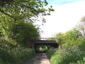 M50 Bridge over Wynd Brook Lane, Pendock Cross
