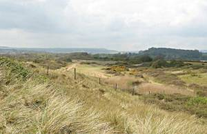 Dawlish Warren Sand Dunes