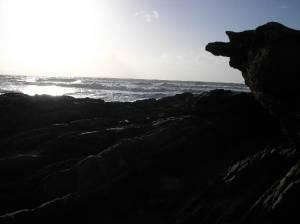 Rocks at Saunton Sands, North Devon.
