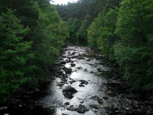 River Cannich