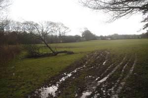 Muddy field near Pontbrenddu