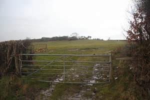 Farmland east of Oakford (Derwen Gam)
