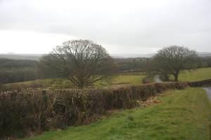 Minor road to Oakford (Derwen Gam)