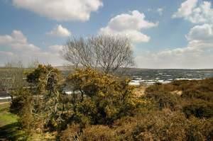 Colliford Lake on Bodmin Moor
