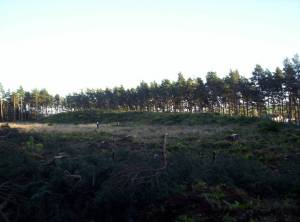 Capo Long Barrow