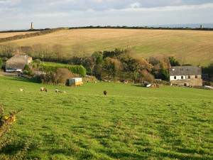 Houses and fields at Portlooe