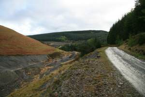 Forest road beside the Nant Bai