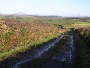 Track leading to Endrick Water