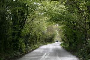 Road to Trefalun Caravan Park Tenby