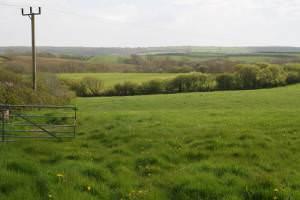 Landscape around Tenby