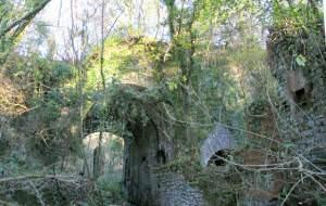Overgrown kilns at Pistyll near Llandybie