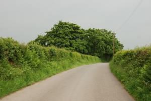 Road north of Lluestnewydd farm