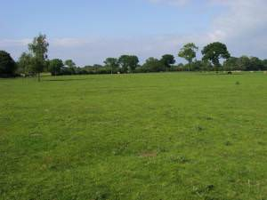 Fields north of Grove Farm